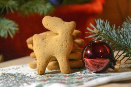 Imbieriniai sausainiai Kalėdų senelio rogėms